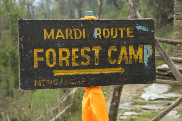 Forest camp Mardi Himal trek