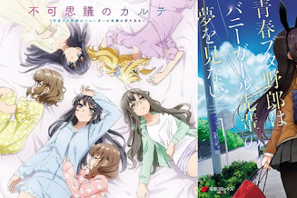 Download Anime Dragon Crisis Seishun Buta Yarou Wa Bunny Girl.. (Episode 1 - 10) Subtitle Indonesia X265