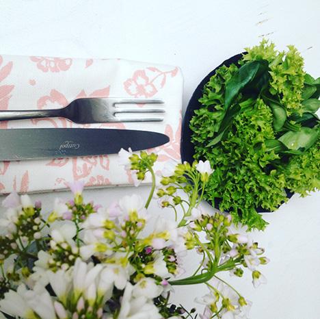 Grüner Salat zu meine Kartoffellaibchen - My Kitchen Logbook by Marlene Grünzweil