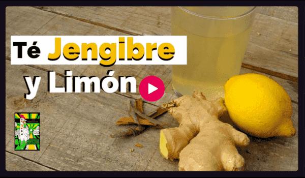 Te de Jengibre con limón bebidas con más antioxidante e inmunoestimulantes que necesita nuestro cuerpo