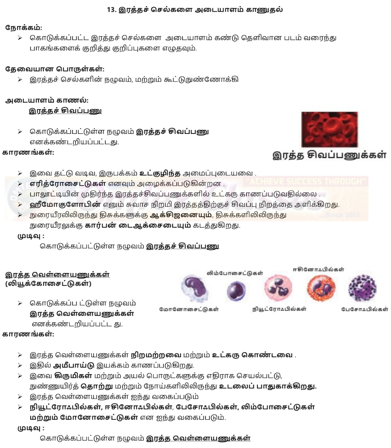 10th Science (New Practical Manuel-September 2019)