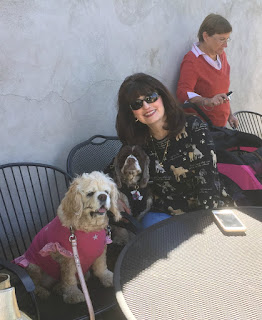Sunday Brunch at the Warwick Winery with Carol Bryant