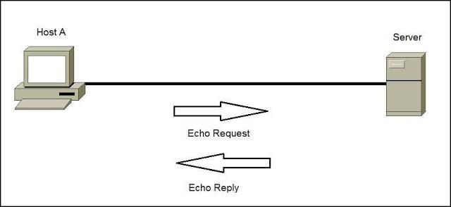 Penjelasan Apa itu Ping Serta Fungsinya 1