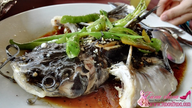 Green Pepper Steamed Catfish