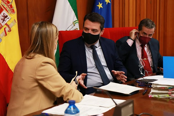 El Pleno aprueba ayudas de 300.000 euros a las cofradías por los gastos adelantados en Semana Santa