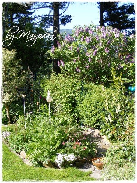 gartenrundgang im fr hling mayodans home garden crafts. Black Bedroom Furniture Sets. Home Design Ideas