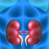 Is HemoHIM good for kidney?