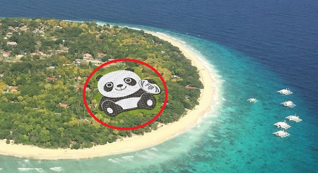 Panda Shaped Solar Power Plants, China