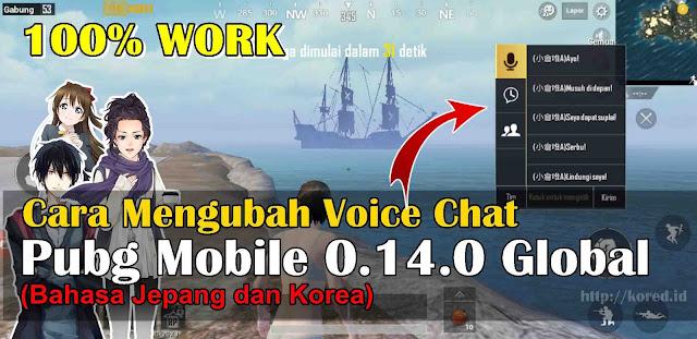 Cara Mengubah Voice Chat di Pubg Mobile 0.14.0 Global Jepang dan Korea