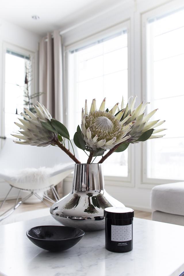 Villa H, kastejuhla, protea, kukat,