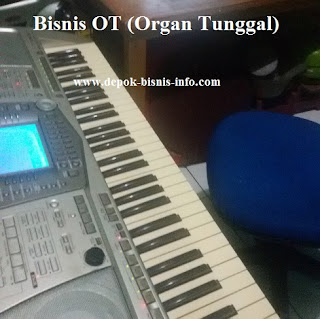 Bisnis, OT, Organ Tunggal
