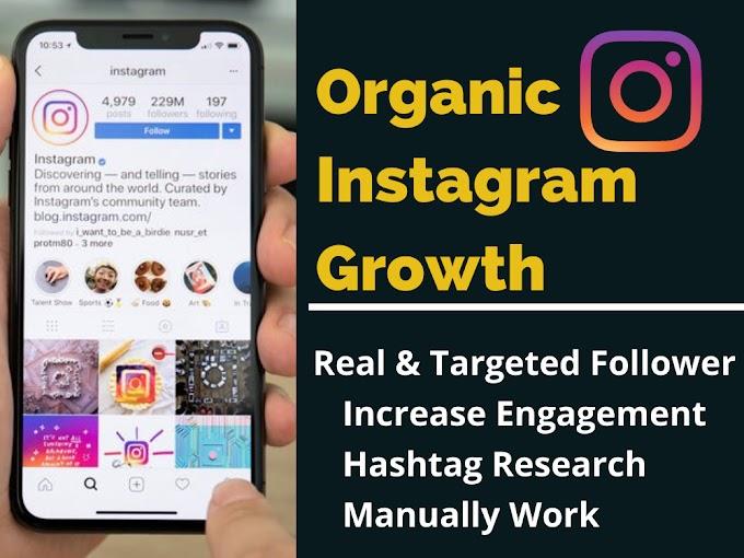 Fast Organic Instagram Growth