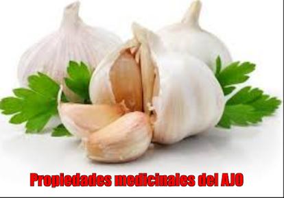 Propiedades medicinales del AJO (Allium sativum)