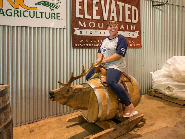 Lisa rides Wilie Elkson
