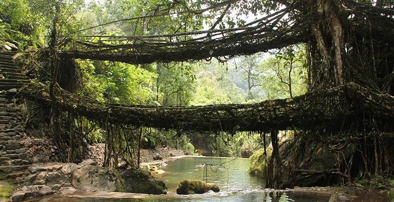Cherrapunji Natural Bridge Attraction