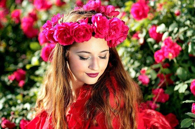 Klasifikasi Dan Morfologi Bunga Mawar Kumpulan Materi Pengetahuan Umum