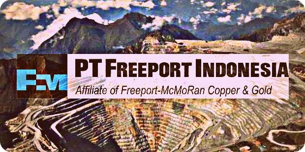 ELSAM Nilai PT Freeport Indonesia Rampas Lahan Adat Masyarakat Papua