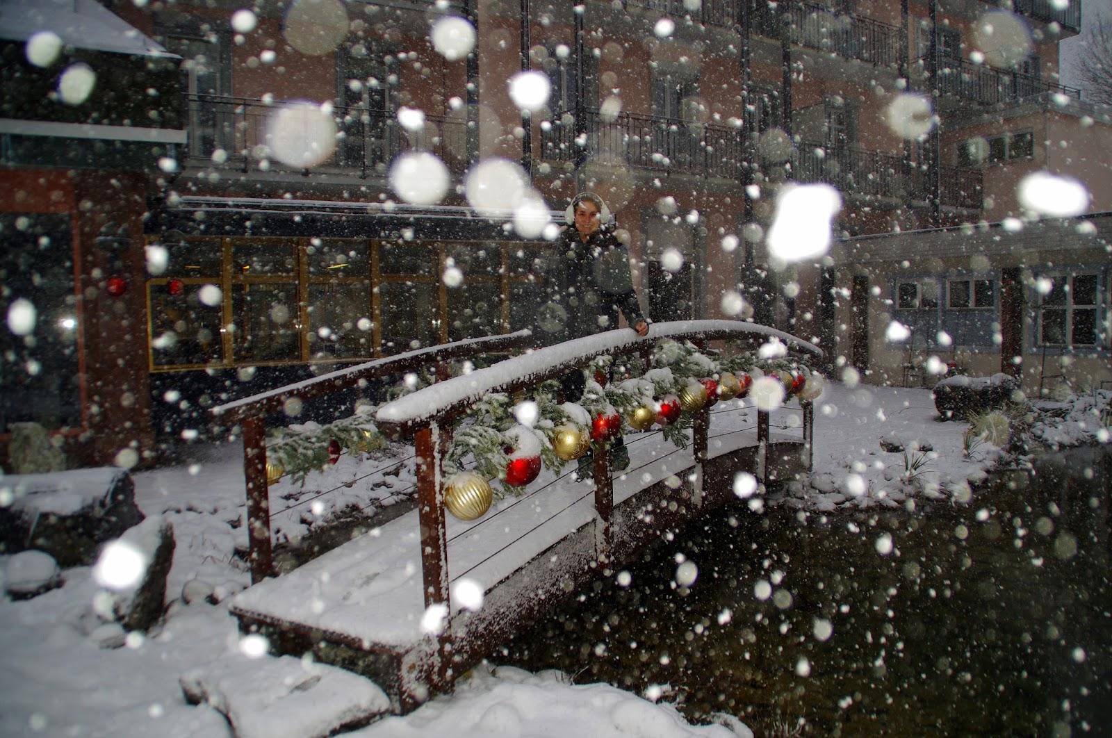 Hotel Belvedere Grindelwald Bridge Snow