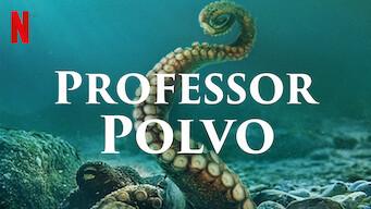 Capa do documentário Professor Polvo, que mostra o título e um polvo no mar