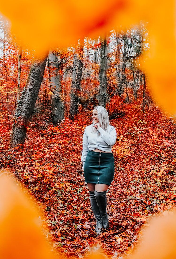 Herbstbilder Natur herbstlicher Feed