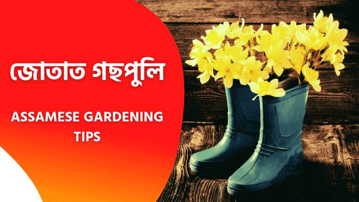 Assamese Gardening Tips | Flower Gardening In Assamese