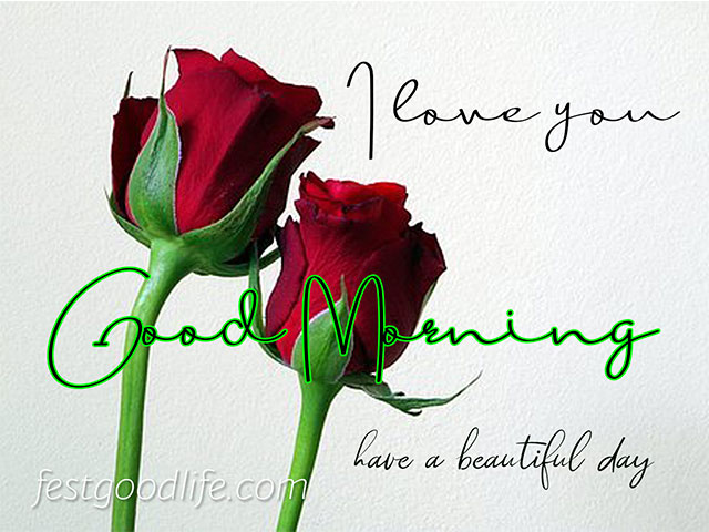 morning images hd download good morning images hd 1080p download