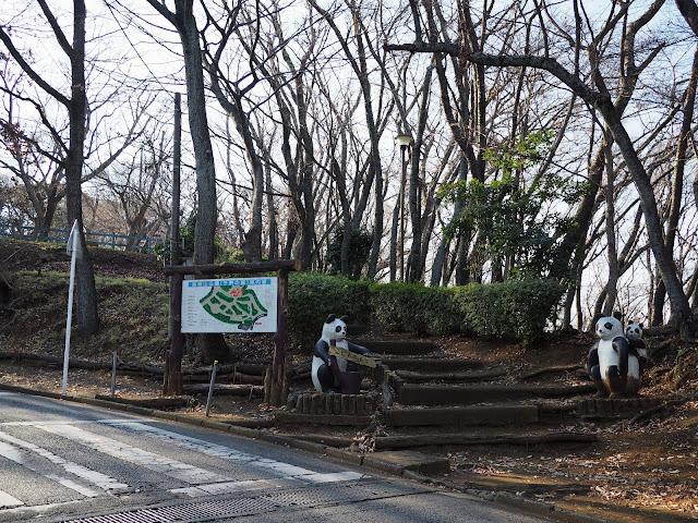 高麗山公園 子供の森