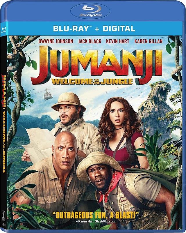 Jumanji Welcome To The Jungle 2017 x264 720p Esub BluRay Dual Audio English Hindi GOPI SAHI