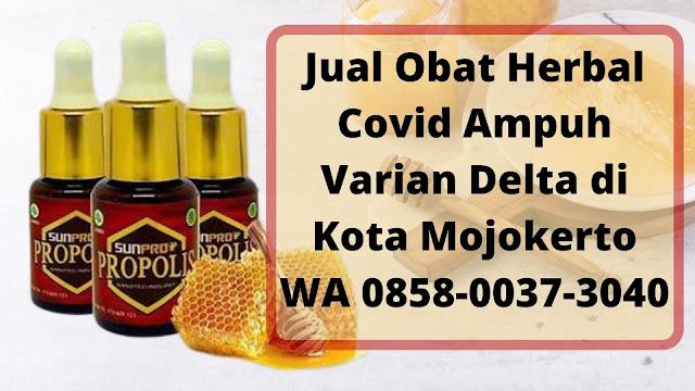 Jual Obat Herbal Covid Ampuh Varian Delta di Kota Mojokerto WA 0858-0037-3040