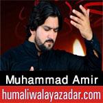 https://aliwalayazadar.blogspot.com/2020/08/muhammad-amir-nohay-2021.html