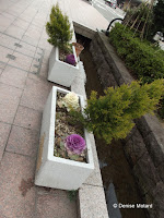 Flower boxes along a street in Kanazawa, Japan