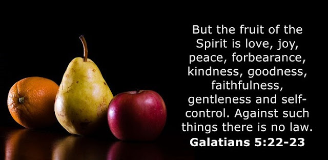 The fruit of the Spirit is love, joy, peace, patience, kindness, goodness, faithfulness, gentleness, self-control. Against such things there is no law.