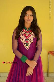 Actress Pooja Jhaveri Latest Stills in Purple Salwar Kameezt at Dwaraka Success Meet  0070.JPG