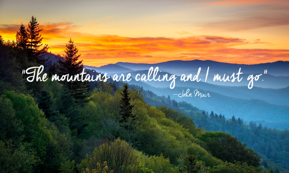 Nature Quotes: Captions About Nature