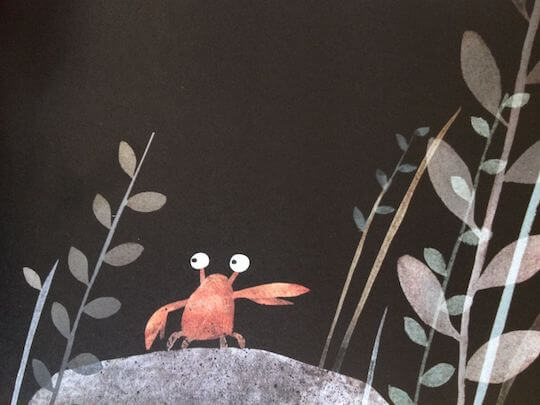 "A book review of Jon Klassen's ""This is Not My Hat"", with LOTS of ideas for discussions and activities."