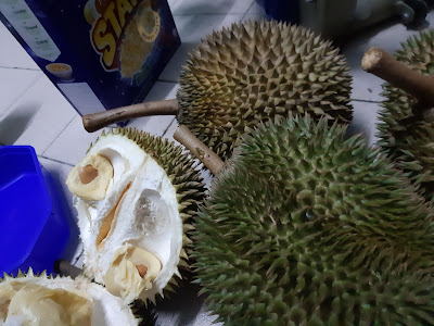 Beli Durian 1O1 Dan Durian Kampung, Lemak Manis Terbaik