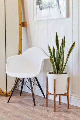 Desain Plant Stand Minimalis untuk Tanaman Hias