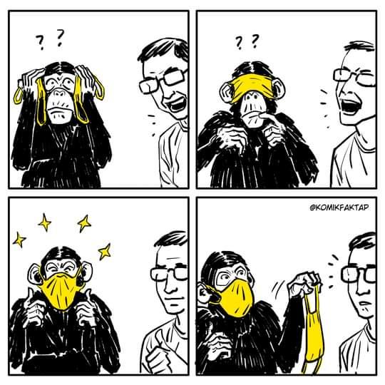 monyet pakai masker