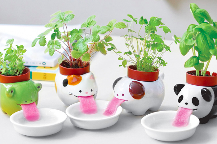 Cute Animal Planters Keep Themselves Hydrated By Drinking From Little Water Bowls