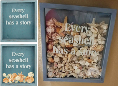 Top Load Sea Shell Shadow Box