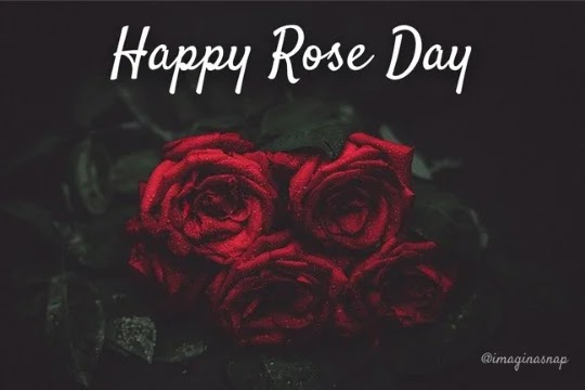Happy Roj Day
