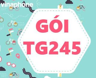 Gói TG245 Vinaphone