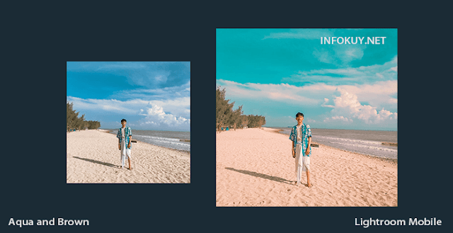 Tutorial Lightroom Aqua and Brown