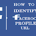 How To Identify Facebook profile URL