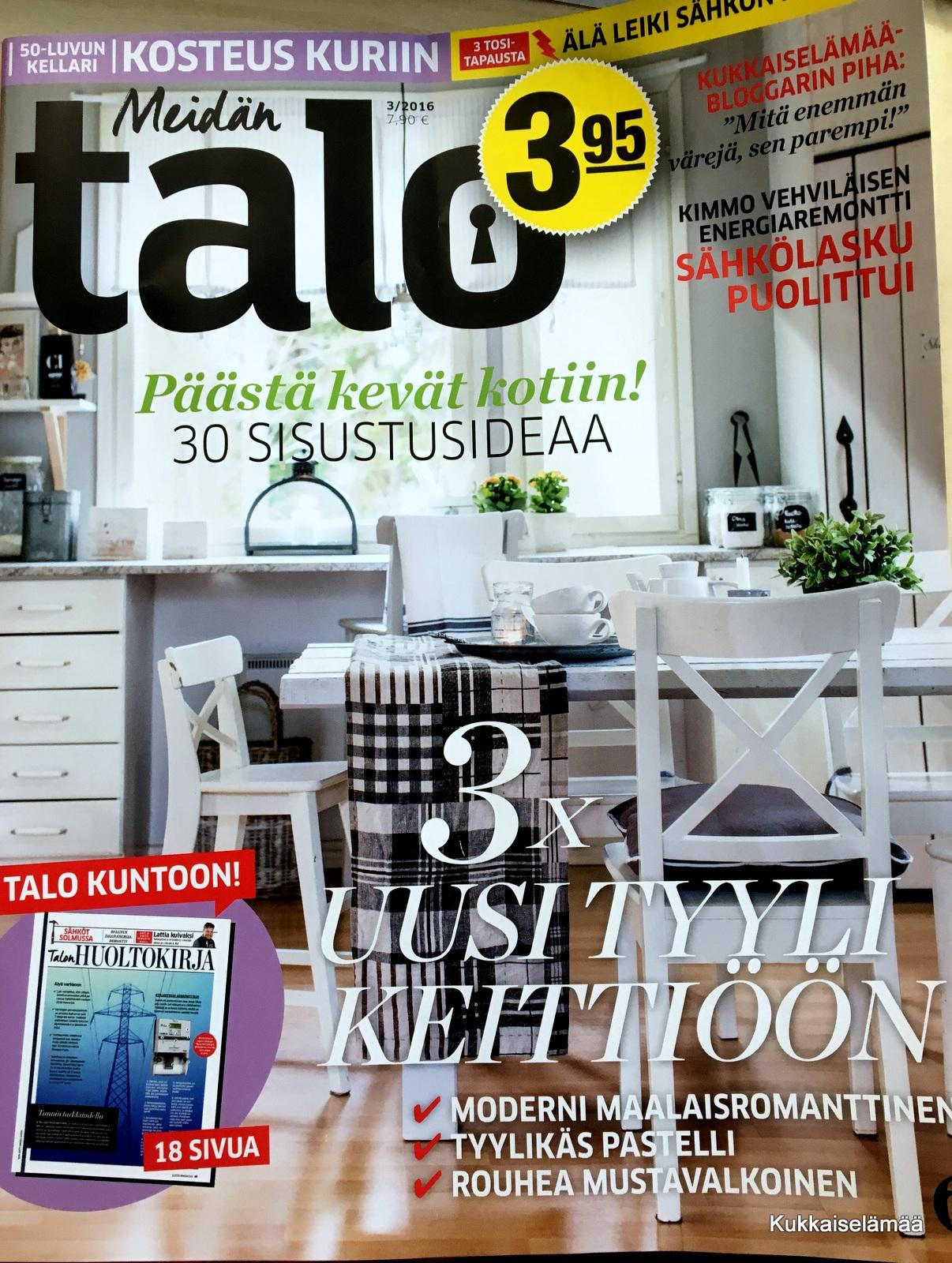 MEIDÄN TALO -LEHDESSÄ 3/2016