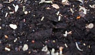 काली मृदा