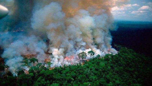 Detectan más de 1.600 focos de incendios en Pantanal, Brasil