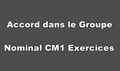 Accord dans le Groupe Nominal CM1 Exercices à Imprimer