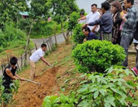 Kids Of UP Government Schools To Create Kitchen Gardens