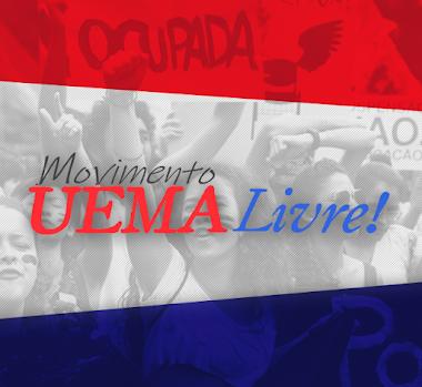 Freelancer - UEMA Livre!